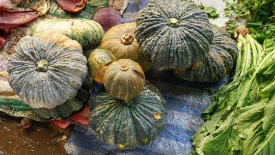Winter Squash_nutrition